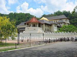 Шри Ланка – благословената земя, с водач от България!
